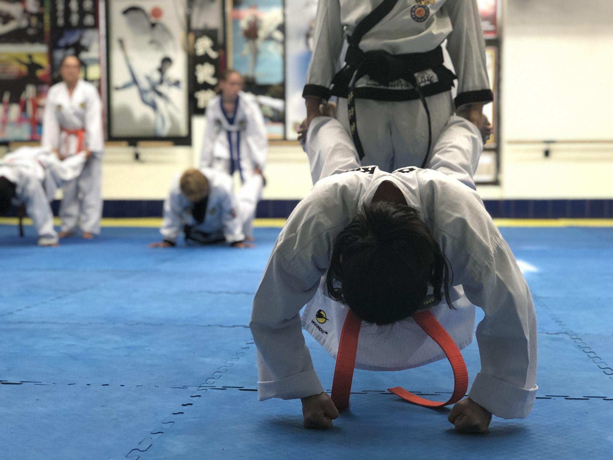 Proyecto Taekwondo v2.0 Entrenamiento